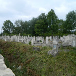 Сокиряны на Буковине