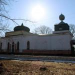 Петровка, Бобровицкий район Черниговской области