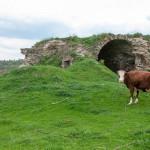 Озаринецький замок