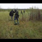 Тарантела на екстремальному болоті. Міжрічинський парк