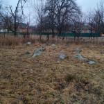 illintsi_tsvyntar1