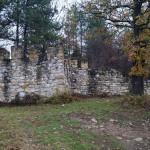 lilyache_fort1