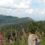 """Национальный природный парк """"Сколевские Бескиды"""""""