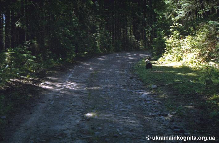 Стара Австрійська дорога