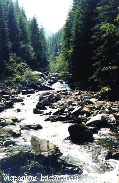 Річка Апшинець