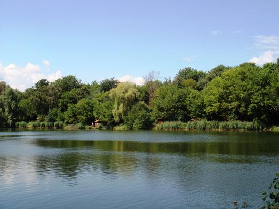 Голосіївський національний природний парк. Дідорівка