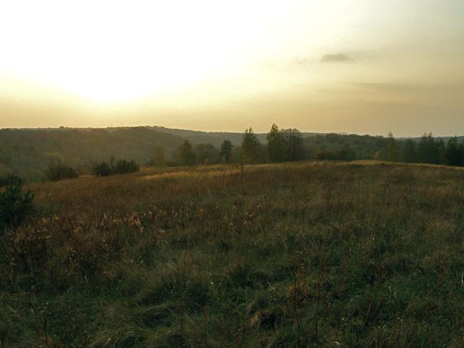 Канівський природний заповідник. Мар'їна гора