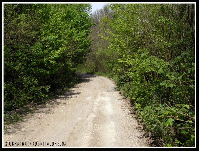 дорога до монастиря