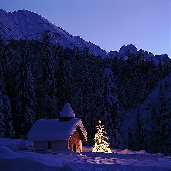 Ялинка у горах