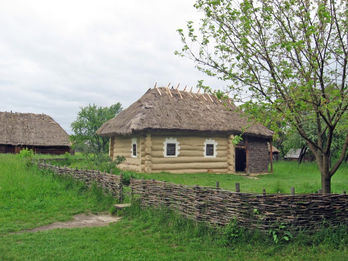 Пирогів