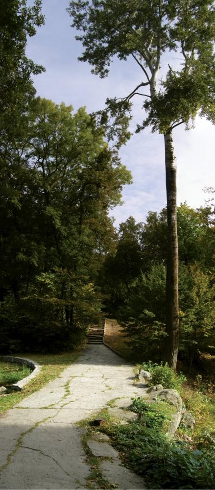 парк Олександрія